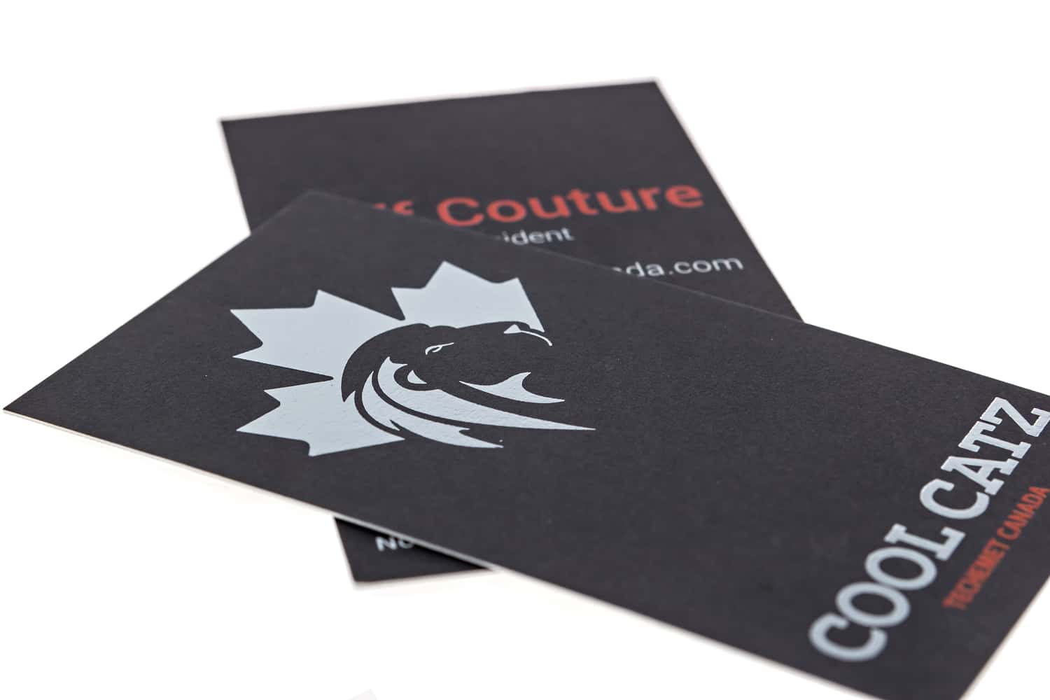 business-card-cool-catz-tech
