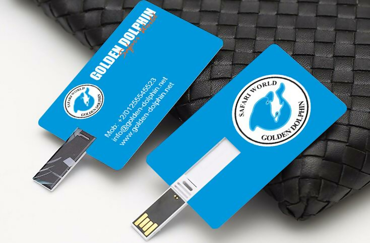 Image result for usb drive business cards